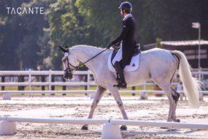 Ecurie-raphael-cochet-concours-complet-equitation-la-louviere-sherazad-de-louviere-tacante