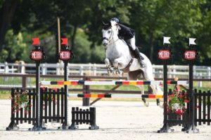 Ecurie-raphael-cochet-concours-complet-equitation-la-louviere-sherazad-de-louvière