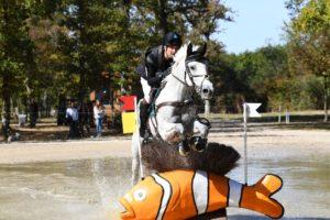 Ecurie-raphael-cochet-concours-complet-equitation-la-louviere-sherazad-de-louvière-chevaux
