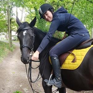 Ecurie-raphael-cochet-concours-complet-equitation-la-louviere-elena-lecamp-sarouille-equipe
