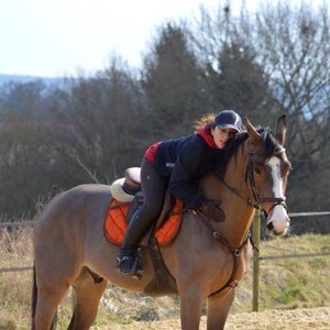 Ecurie-raphael-cochet-concours-complet-equitation-la-louviere-wendy-phung-equipe