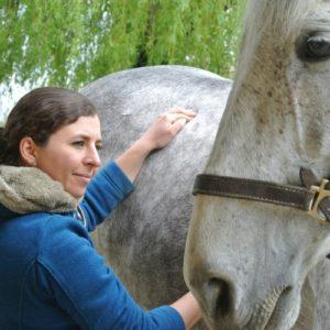Ecurie-raphael-cochet-concours-complet-equitation-la-louviere-emeline-moutiez