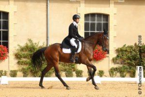 Ecurie-raphael-cochet-concours-complet-equitation-la-louviere-drako-de-coat-loach